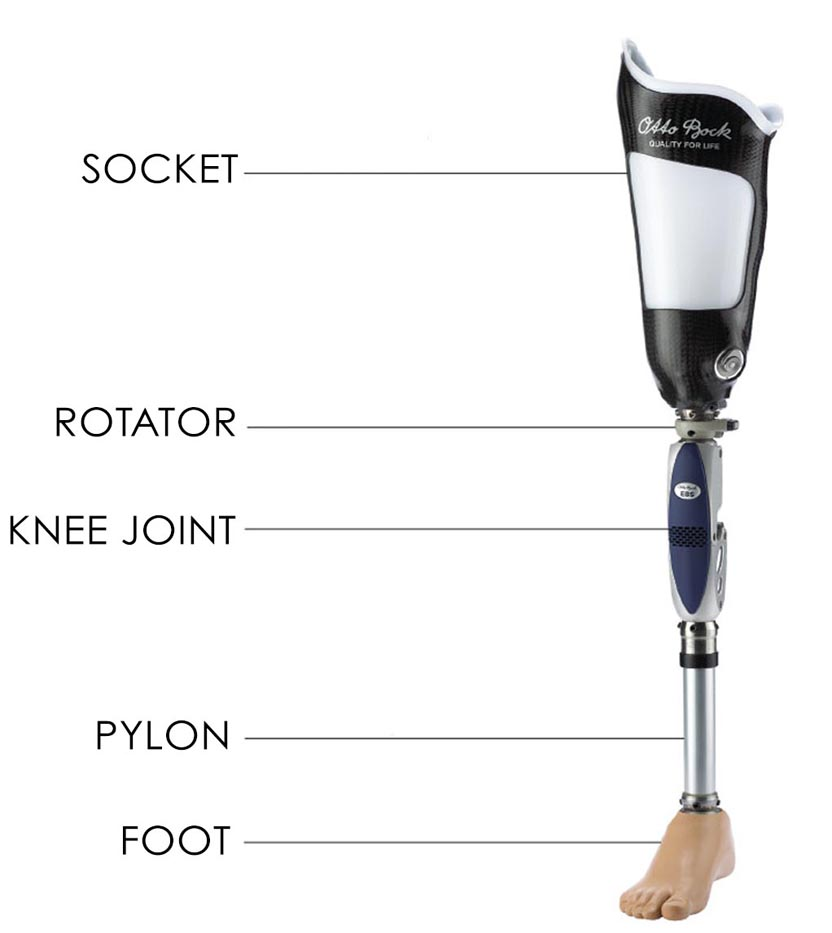 pylon-socket-rotator-foot-knee-joint